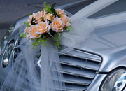 Car rental for weddings